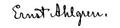 Victoria Benedictssons signatur.png