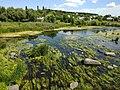 View from Bridge of Love (Boguslav, Ukraine) Міст кохання (Богуслав, Україна) (50170434412).jpg