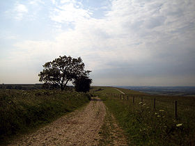 View from Walbury Hill.jpg