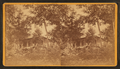 View of a home and a cart in front, from Robert N. Dennis collection of stereoscopic views.png