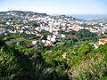 Vista de la villa mariana de Teror - panoramio.jpg