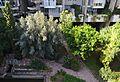 Vista del jardí interior de l'edifici Espai Verd, Benimaclet.JPG