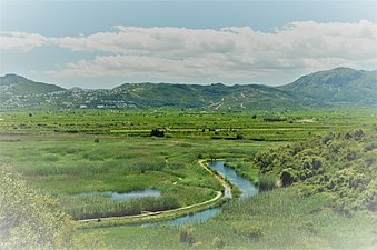 Vistes des de la Muntanyeta verda II, Marjal Pego-Oliva.jpg