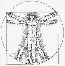 Leonardo da Vinci: Der Vitruvianische Mensch