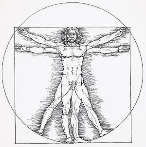 English: Vitruvian man by Leonardo da Vinci