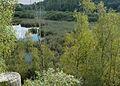 Vred.- Parc naturel régional Scarpe-Escaut Le Terril de Germignies-Nord (3).jpg