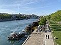 Vue du Rhône depuis le Pont Wilson (Lyon), mai 2019.jpg