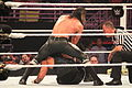 WWE Raw IMG 7957 (15355382945).jpg