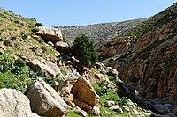 Wadi-Makukh-572.jpg