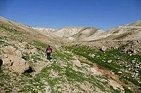 Wadi-Makukh-618.jpg