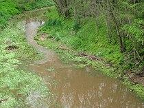 Wakefield River, Auburn.JPG