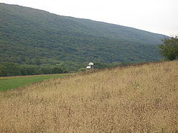Farm and mountain in Walker Township