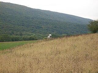 Walker Township, Juniata County, Pennsylvania Township in Pennsylvania, United States