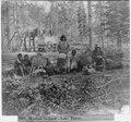 Washoe Indians-Lake Tahoe LCCN2002721338.tif