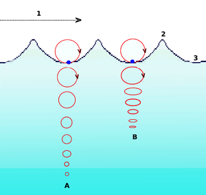 A = At deep water. B = At shallow water. The circular movement of a surface particle becomes elliptical with decreasing depth. 1 = Progression of wave 2 = Crest 3 = Trough