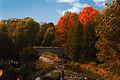 Webster Falls - Laslovarga.jpg