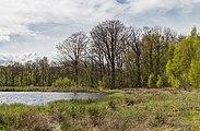 Wijnjeterper Schar, Natura 2000-gebied provincie Friesland 12.jpg