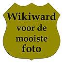 Wikiward foto.jpg