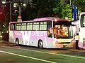 Willer-express BX212 (pink).jpg