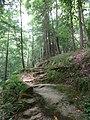 Winston County, AL, USA - panoramio (6).jpg