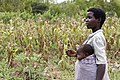 Woman farmer and baby, Malawi.jpg
