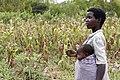 Woman farmer and baby, Malawi.jpg