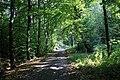 Wrześniowy spacer - panoramio (3).jpg