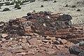 Wupatki National Monument - Citadel Pueblo - 09.JPG