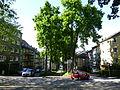 Wuppertal Ottostraße 2014 034.JPG