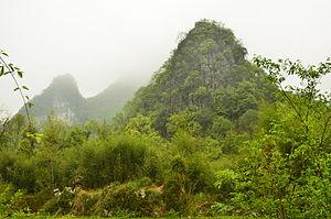 Libo County