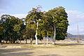Yamashirokokubunji Kizugawa Kyoto pref Japan05s3.jpg