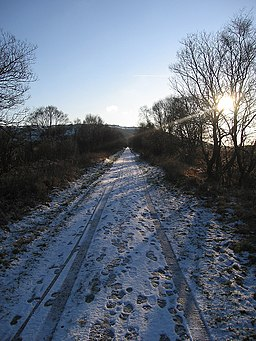 Ystwyth Trail, Cors Caron Nature Reserve - geograph.org.uk - 1651694