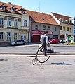 Zbraslav 2011, vysoké kolo Kohout (01).jpg