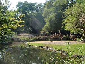 Basel Zoo - Africa exhibit