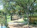 Zoo Municipal de Mercedes - panoramio (35).jpg