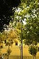 ® MADRID E.R.U. CAPILLA-HOSPITAL V.O.T. de SAN FRANCISCO - panoramio.jpg