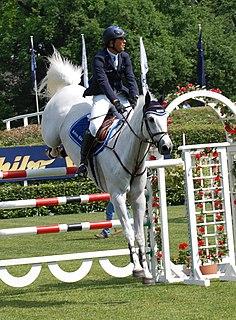 Brazilian equestrian