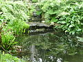 Île de Batz 037 Jardin Georges Delaselle.JPG
