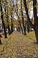 Аллея Александровского сада.jpg