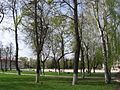Без названия - panoramio (320).jpg