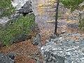 Гора Средняя (хребет Алабия) - panoramio (13).jpg