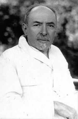 Dmitry Ilyich Ulyanov - D. I. Ulyanov