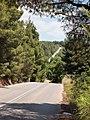 Дорога из Метаморфози в Метагкитси(^) - panoramio.jpg