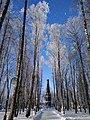 Лопатинский сад. Зима. Памятник защитникам Смоленска 4-5 августа 1812 года.jpg