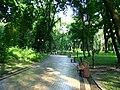 Маріїнський парк (1)!.JPG