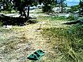 Место стоянки боевиков, оставшийся мусор.jpg