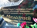 Могила двічі Героя Радянського Союзу Молодчого О.І. (1920-2002рр.jpg