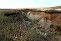 Овраг Длинный рядом с прудом - panoramio.jpg
