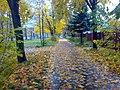 Осень - panoramio (22).jpg