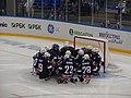 Паралимпиада следж-хоккей США 2014.JPG